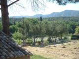 photos-saintremydeprovence.fr/gites Alpilles Provence